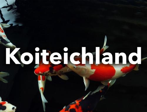 Koiteichland